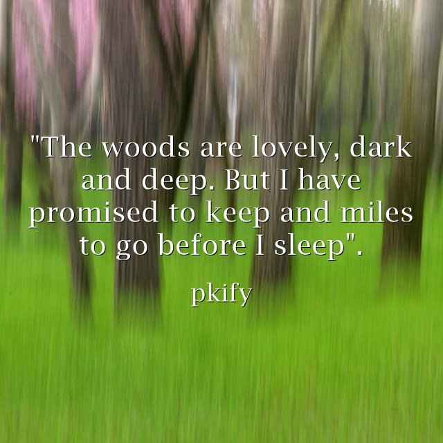 The Woods are Lovely Dark and Deep Nature Quotes