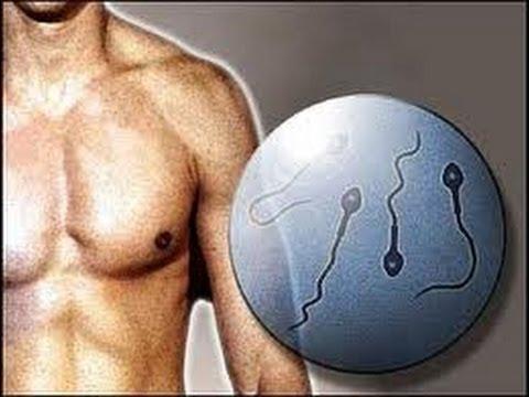 Salud| 3 de cada 10 tratamientos de fertilidad se indican por causas masculinas