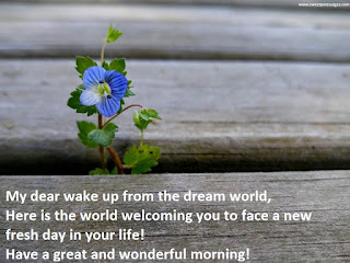 My dear wake up from the dream world, Here is the world welcoming you to face a new fresh day in your life! Have a great and wonderful morning!