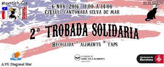 Diagonal Mar Solidario