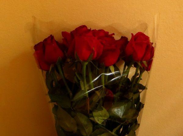Купить розы на острове Самуи