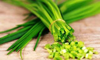 Rekomendasi Herbal : Khasiat Bawang Kucai