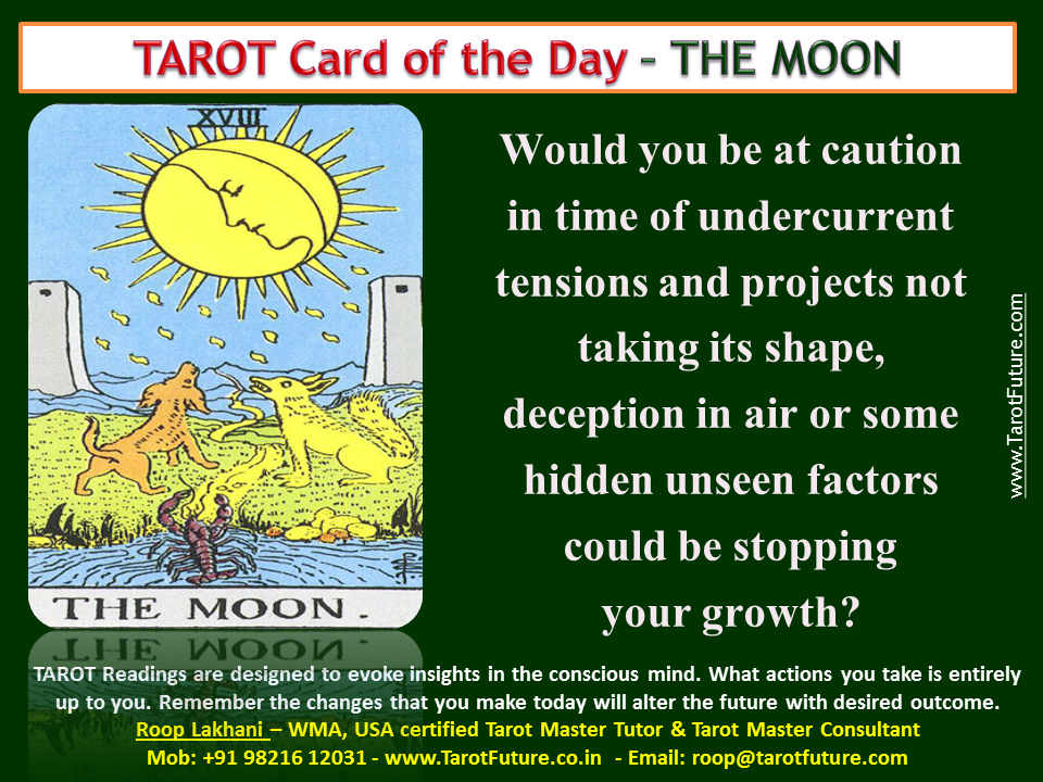 Tarot Card of the DAY - THE MOON | Roop Lakhani