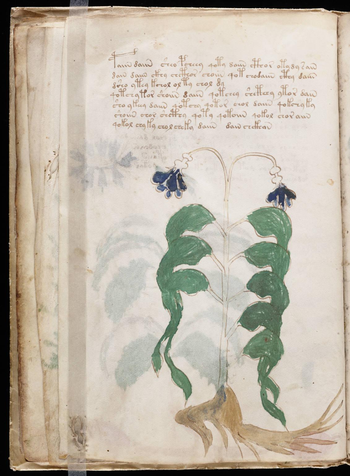 manuscrito022