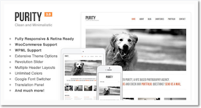 themeforest.net/item/purity-responsive-clean-minimal-bold-wp-theme/639774?ref=Eduarea