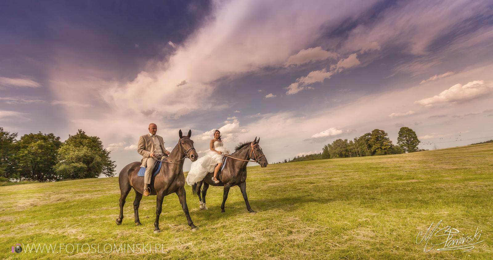 Sesja ślubna w plenerze - Stadnina koni - Zdjęcia koni - sesja na koniach.