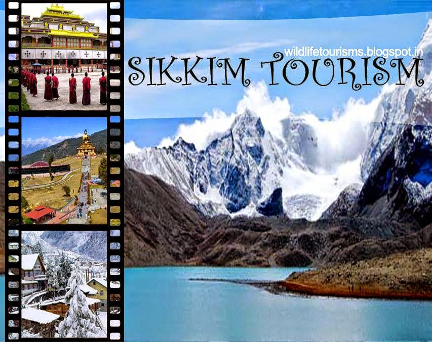 Sikkim Dedicated To Wildlife And