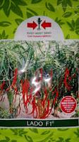 benih petani,tahan virus, buah lebat, cap panah merah, tahan layu, tahan cekaman calcium, Cabai Lado, Cabe Lado, Harga murah