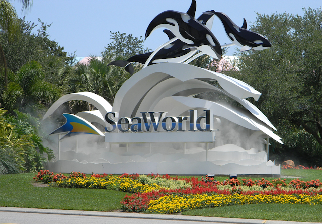 10 destaques do parque Sea World em Orlando