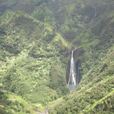 steep wet forest of Kauai