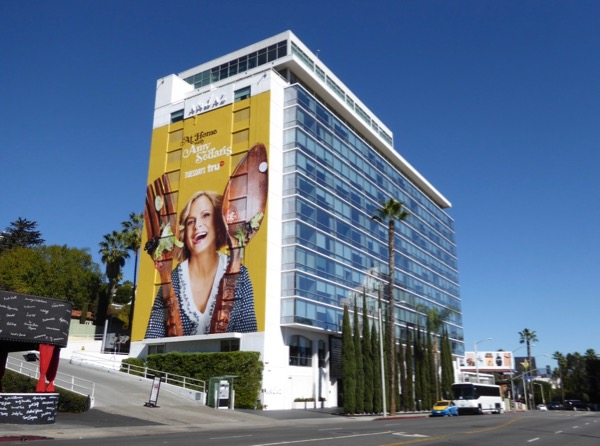 Giant At Home with Amy Sedaris billboard