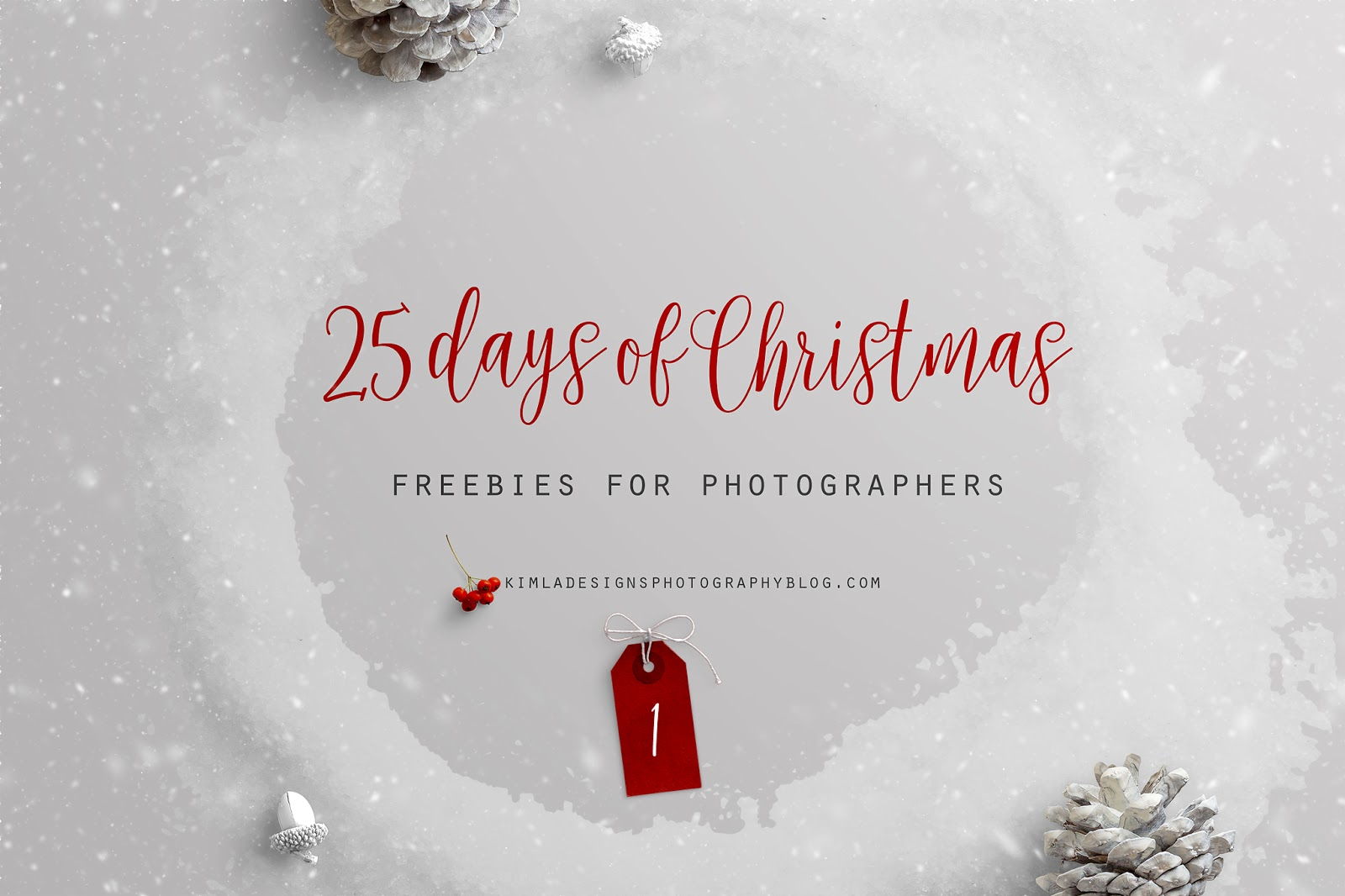 Day 1 of 25 Days of Christmas Freebies for Photographers