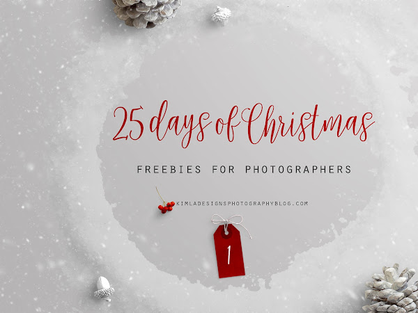 25 Days of Christmas Freebies for Photographers - Day 1st