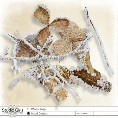 http://shop.scrapbookgraphics.com/2016-cu-winter-twigs-2.html