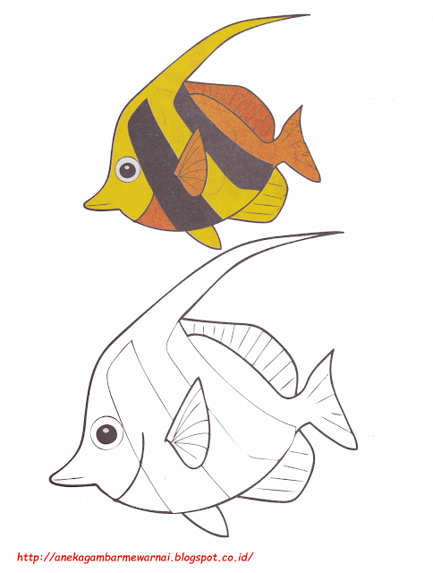 Gambar Mewarnai Ikan Bendera
