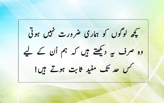 28 Urdu Quotes About Family People And Relationship