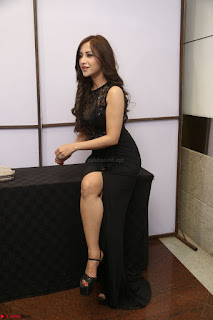 Angela Krislinzki in Transparent Black Gown at Rogue Movie Teaser Launch 1st March 2017 063.JPG