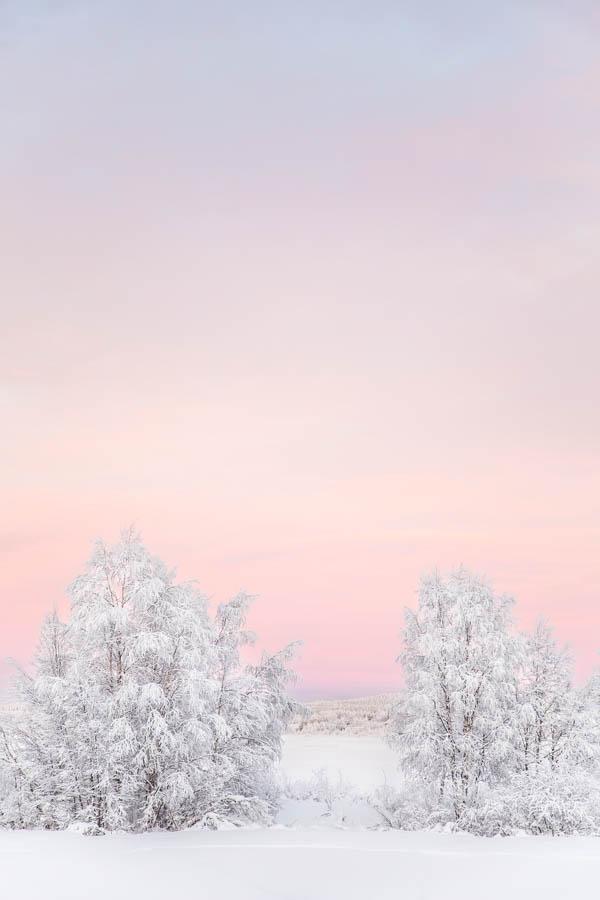 Kaamoksen värejä lumisessa talvimaisemassa Muoniossa