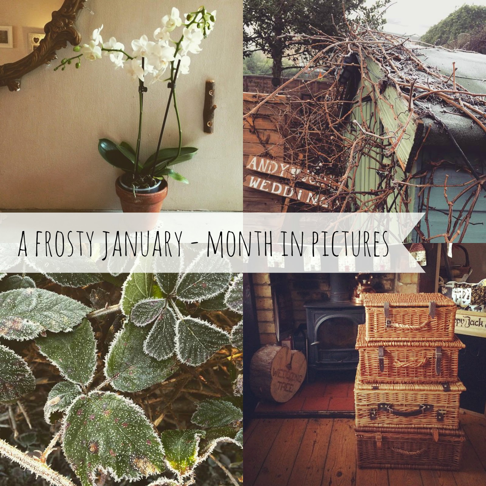 A frosty January + my month in pictures