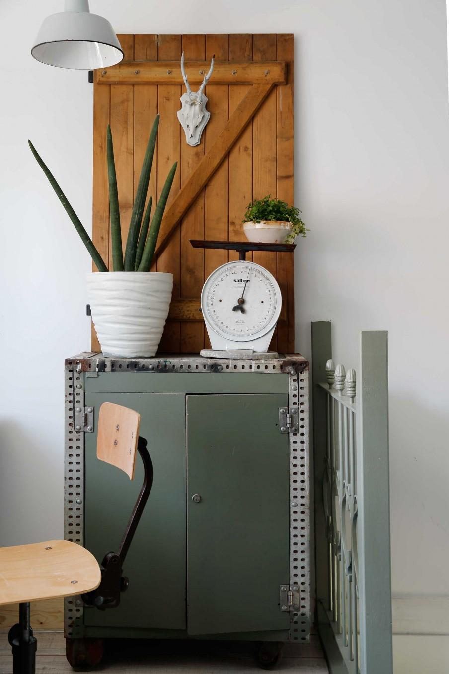 puerta decorativa, aloe vera, estilo industrial, plantas, armario, silla madera, plantas interior, bascula, vintage,
