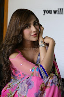 Actress Angela Krislinzki in Pink Saree Blouse Exclusive Pics March 2017 ~  010.JPG