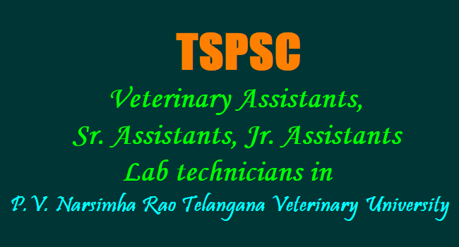 tspsc veterinary assistants, assistants, lab technicians in pvnr ...