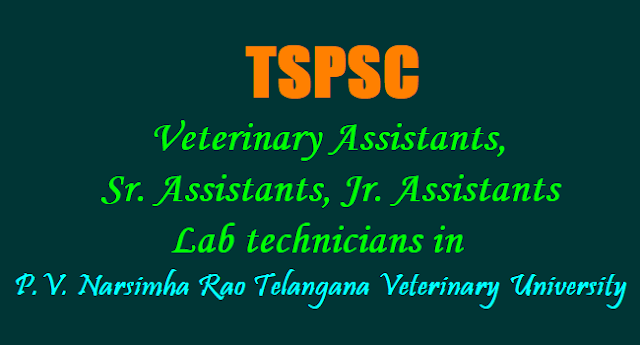 TSPSC to fill Veterinary Assistants, Jr.Assistants,Typists, Sr. Assistants, Lab technicians in PVNR Telangana Veterinary University,