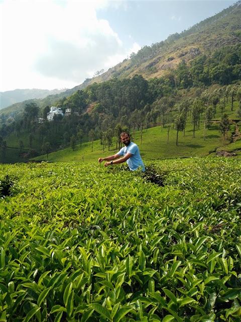 munnar kerala tea gardens vikran tej