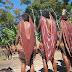 Noken, Tas Tradisional Khas Papua