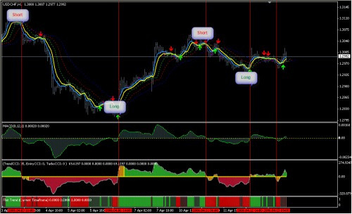 Ivy bot automated forex robot