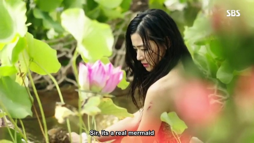 Lotus flower fairy korean drama ep 1 best flower 2017 lotus flower fairy korean drama gallery decoration ideas mightylinksfo