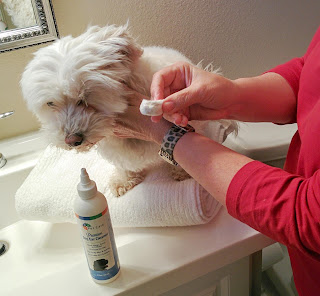 BVH Pet Care's Premium Dog Ear Cleaner is made w/ all natural ingredients