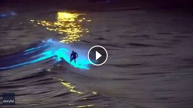 Bioluminescent waves Surfers ride glowing waters off San Clemente San Diego coasts ABC7