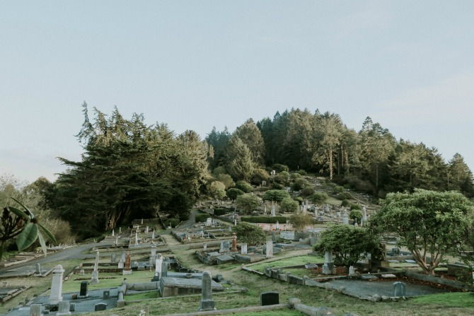 things to do along the northern california coast: visit ferndale