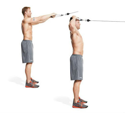 low cable face pull shoulder workout