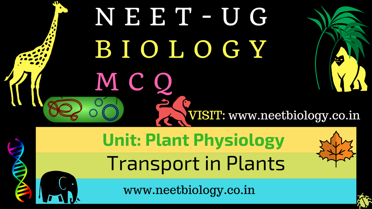 MCQ on Transport in Plants - Transpiration and Ascent of Sap ~ NEET