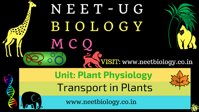 transport in plants mcq