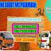 SEDOT WC BENDO MUNGAL PASURUAN 082264442511