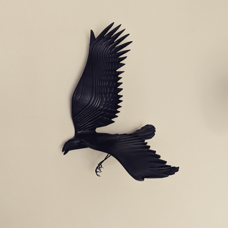 image of a carved wood black crow hanging on my wall