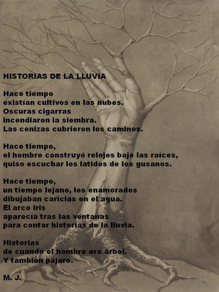 Storia Della Pioggia Marcos Jimenez Leon Poesie Sullalbero