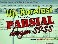 Cara Uji Korelasi Parsial dengan SPSS Serta Interpretasi Lengkap
