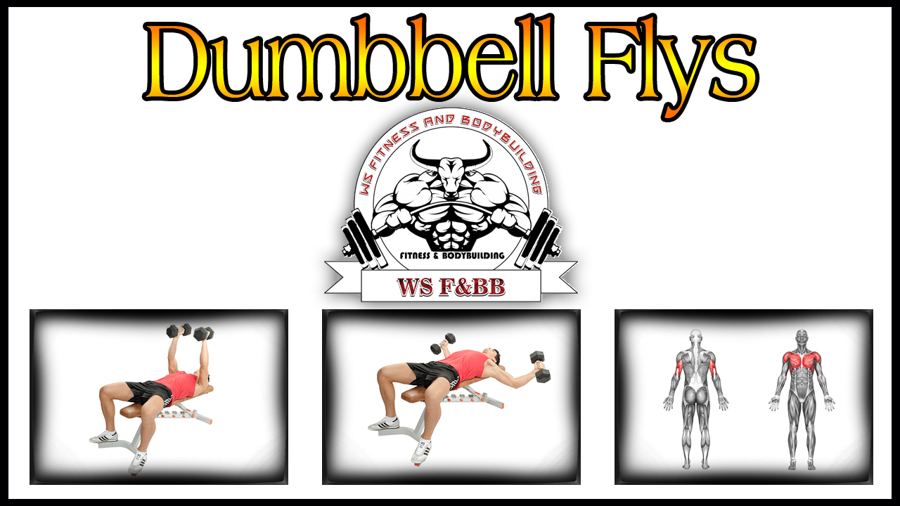 Dumbbell Fly Chest Workout How To Do It Right By WS Fitness And Bodybuilding