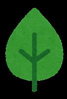 葉っぱのマーク(涙型の葉)