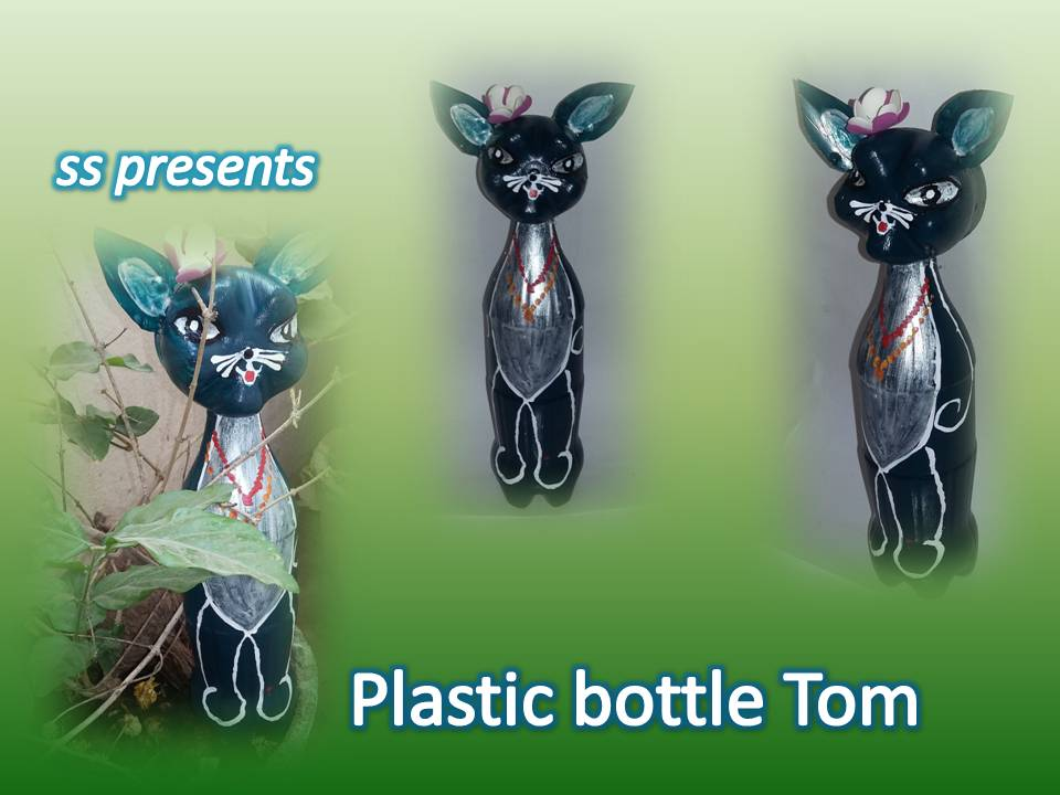 How To Make Cat Using Plastic Bottle Ssartscrafts