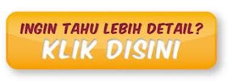 http://member.websitewordpresspemula.com/aff.php?aff=29