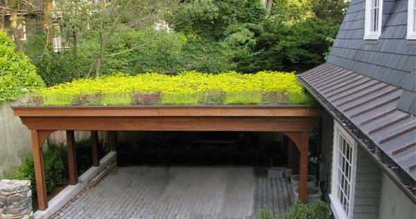 a vz dachbegr nung und dachbepflanzung von carports. Black Bedroom Furniture Sets. Home Design Ideas