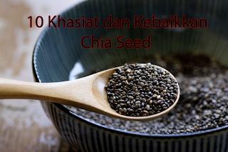 10 Khasiat dan Kebaikkan Chia Seed Untuk Diet yang Sihat