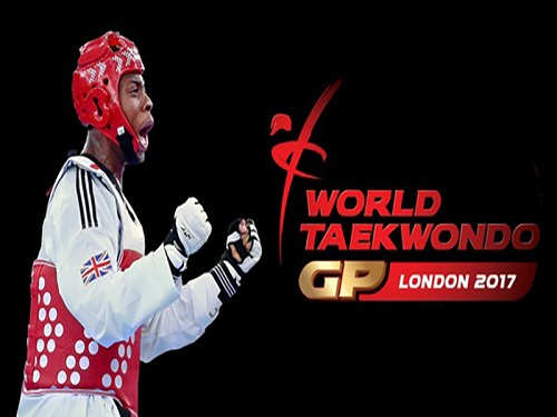 Taekwondo Grand Prix Game Free Download
