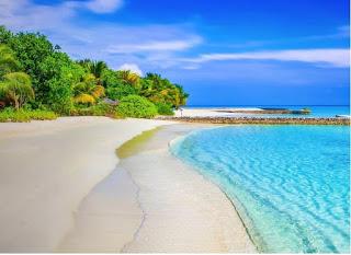 Você fica envergonhado ao pedir/tirar férias?