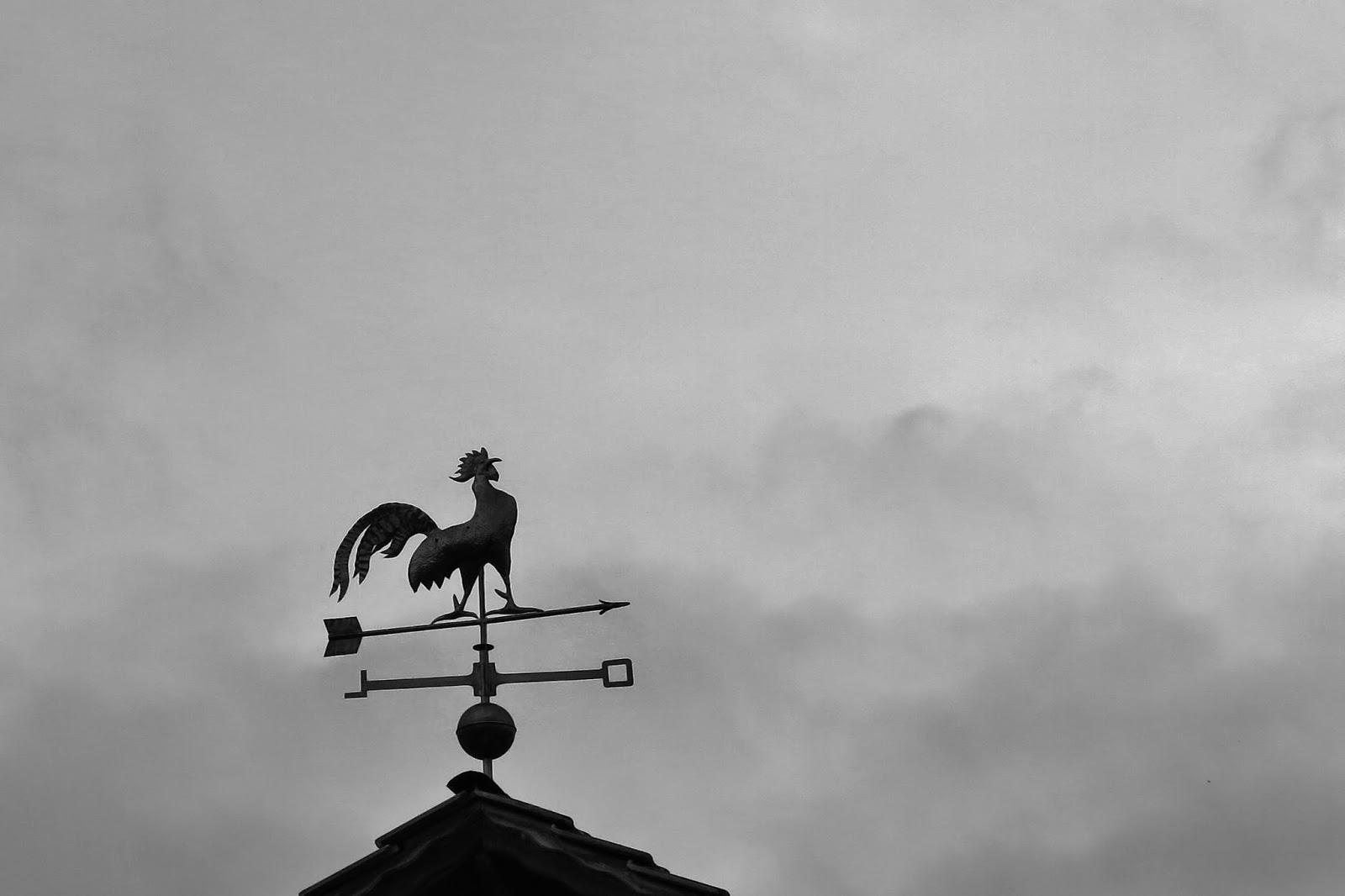 Galo no telhado típico de Treze Tílias